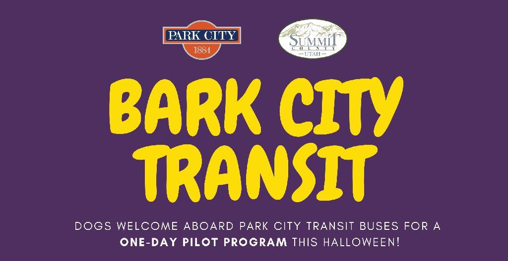 Bark City transit on October 31st