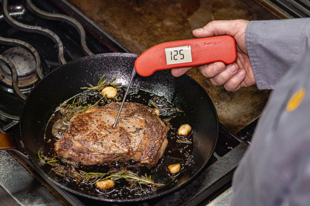 ThermoWorks Pro Level One-Second Thermometer